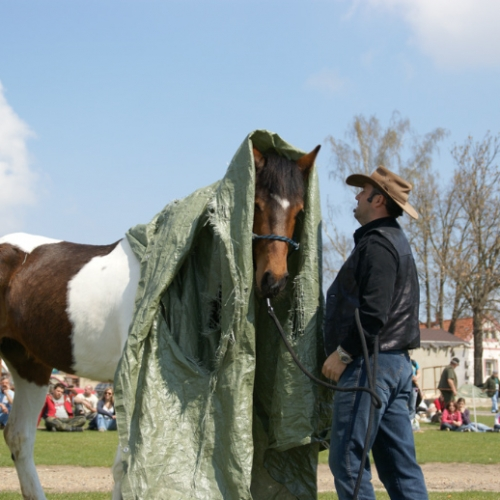 Horsemanship - práce s praporkem ukázka ŘEDHOŠŤ 16.4.2011