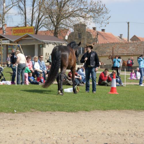 Horsemaship - práce ve volnosti - ukázka v ŘEDHOŠTI 16.4.2011