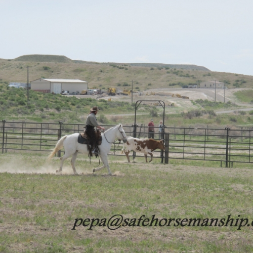 Idaho - ranch Martina Blacka